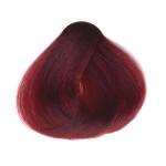 СаноТинт крем-краска для волос Лесная ягода №22